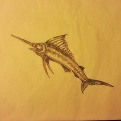 skeleton drawing of a blue marlin fish google search collection pinterest drawings of. Black Bedroom Furniture Sets. Home Design Ideas