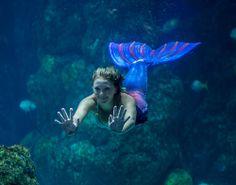 mermaids-3761