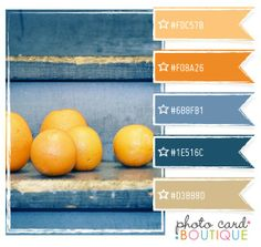 Bahama blue, Nepal, clementine, sun, poncho palette - maybe a color palette for the kitchen or a bathroom? with yellow instead of orange Design Seeds, Room Colors, House Colors, Colour Schemes, Color Combos, Blue Orange, Orange Color, Orange Walls, Yellow