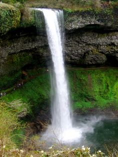Silver Falls State Park, Silverton, Oregon.  10 waterfalls, 1 great day hike!!