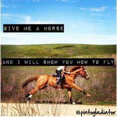 Give me a horse and I will show you how to fly. by pintogladiator on Polyvore featuring polyvore art
