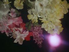 Water drop flowers