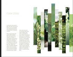 Gorgeous layout and photo treatment!