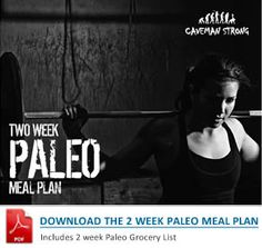 2 week Paleo Meal planner