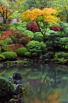 Portland Japanese garden. Great mosaic of color contrasts for the fall. #zen