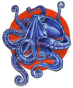 Another Tattoo design commission from Etsy I have NEVER drawn an entire octopus before, so the task was very exciting and a little intimidating at first. But I am very pleased with the final result. Octopus Tattoo Design, Octopus Tattoos, Octopus Art, Squid Tattoo, Octopus Illustration, Octopus Jewelry, Kawaii Tattoo, Sea Life Art, T Art