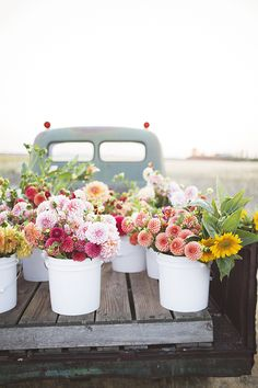 Perk Up Your Garden With These Handy Tips. Gardening is a fun and rewarding hobby with many benefits. It does not matter if you grow vegetables or flowers in your garden, growing and caring for the Flower Truck, Flower Farm, Cactus Flower, Spring Aesthetic, Flower Aesthetic, Fresh Flowers, Beautiful Flowers, Spring Flowers, Exotic Flowers