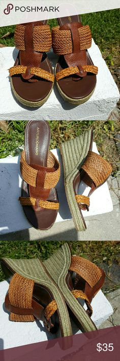 FINALArturo Chiang Wedges This is a fantastic pair of Arturo Chiang Wedges Very good Condition. Bought from a fellow Posher and ordered the wrong size. 10m Arturo Chiang Shoes