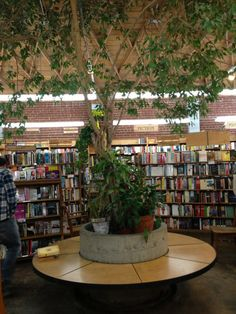 Skylight Books in Los Angeles, CA  There's a tree int he middle of it!!!