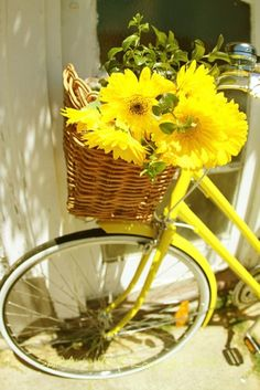 Yellow flowers in a wicker basket on a yellow bike