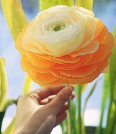 Такое солнце☀️, что и не скажешь, что за окном -25!❄️А у нас сегодня распустился вот такой бумажный ранункулюс! ⬇️⬇️⬇️English⬇️⬇️⬇️ It is -25❄️ today, but the sun is shining like in spring!☀️ And we have created such a spring paper ranunculus!