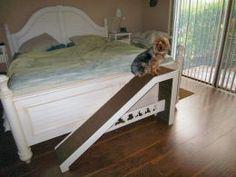 My father's homemade dog ramp!