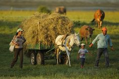 Farming family going home from work in the evening. Lake Prespa National Park, Albania