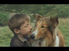 Lassie (2005) - teljes film magyarul Asd, Corgi, Youtube, Animals, Corgis, Animales, Animaux, Animal, Animais
