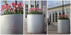 ...  świat wokół mnie   ...: ... Happy B-Day Gdynia ...