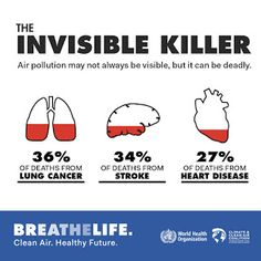 Air pollution causes heart and lung disease and cancer resulting in approximately million deaths each year. Breathe, United Nations Environment Programme, World Organizations, Fitness Motivation, Leader Quotes, World Environment Day, Foto Real, World Health Organization, Circular Economy