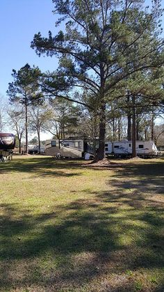 Sun Runners RV Park Gulf Shores AL Passport America Campgrounds
