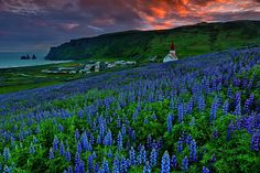 Vik after midnight by Yiannis Pavlis on 500px (Iceland)