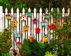 69 People Who Took Their Backyard Fences To Another Level : Bird House Fence Decor White Picket Fence, White Fence, Black Fence, Picket Fences, Green Fence, Backyard Fences, Backyard Privacy, Backyard Ideas, Farm Fence