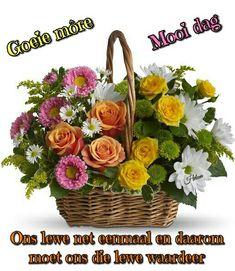 13 Best All Saints Day November 1st Images Floral Arrangement