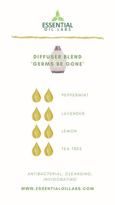 clean house diffuser blend Germs be Gone Diffuser Blend by Essential Oil Labs using peppermint essential oil, lavender essential oil, lemon essential oil and tea tree essential oil. Essential Oils For Colds, Essential Oil Spray, Essential Oil Scents, Essential Oil Diffuser Blends, Tea Tree Essential Oil, Peppermint Essential Oil Uses, Lavender Essential Oil Uses, Essential Oil Combinations, Osho