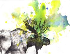 Moose Animal Art Print From Original Watercolor Painting 8 x10 in. Great Baby Nursery Children Kids Wall Art and Everyone Else