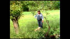 Michal Tučný - Tam u nebeských bran [video] Music Artists, Songs, Retro, Country, World, Youtube, Music, The World, Rural Area
