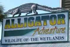 Alligator Adventure in Myrtle Beach, SC