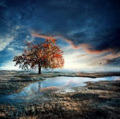 Landscape Photography by Kokoszkaa
