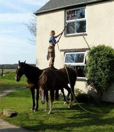 Good use of tall horses!