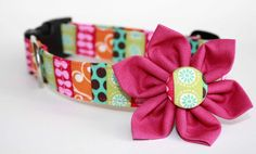Gypsy Dog Collar & Flower Set by CreatureCollars on Etsy, $26.00