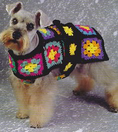 Free Crochet Patterns For Dogs Coats : 1000+ images about Crochet for Dogs on Pinterest Dog ...