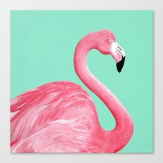 Buy Pink Flamingo Canvas Print by Lorri Leigh Art. Worldwide shipping available at Society6.com. Just one of millions of high quality products available.