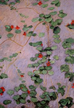 amare-habeo:  Gustave Caillebotte (French, 1848-1894)Nasturtiums, 1892Oil on canvasvia  la-belle-epoche