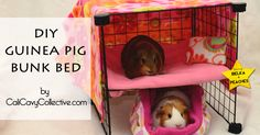 A recap of the year, in guinea pig posts.