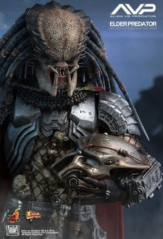 Hot Toys : Alien vs. Predator - Elder Predator 1/6th scale Collectible Figure
