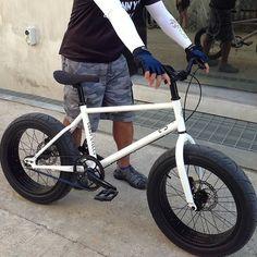 Fat bike. Looks like fun!