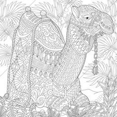 Adult Coloring Pages. Camel. Zentangle by ColoringPageExpress