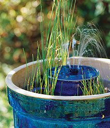 Exhibit B: A grassy fountain - Canadian Gardening
