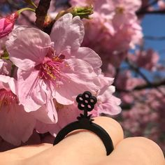 Beautiful 🌸 Cherry Blossom in Tokyo 🇯🇵. Natural Rubber, Cherry Blossom, Tokyo, Minnie Mouse, Beautiful, Disney Characters, Walking, Art, Ring