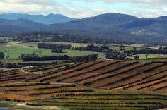 Tamar Valley, Tasmania. | 29 Places In Australia You Need To Visit Before You Die