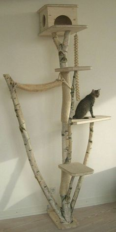kratzbaum aus einer birke djur leksaker pinterest leksaker katter och djur. Black Bedroom Furniture Sets. Home Design Ideas