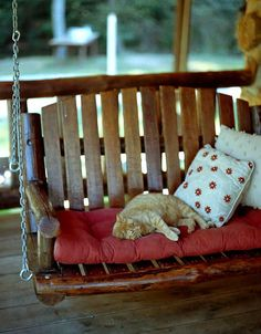 A comfy porch swing and a lazy cat... add a cool breeze and a good book.... purr-fection!