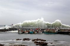 Gigantic waves at Kalk Bay Harbour - Bing Images 1 Place, Cape Town, Wildlife Photography, South Africa, Bing Images, Waves, Landscape, Country, City