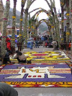 Flower Carpets, Easter in Tarma, Peru