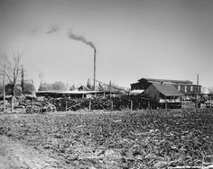 Rutherford County's first industry was a bucket factory which opened in 1857 by John C. Spence. The company was forced to operate on a limited scale until after the Civil War. After the war, it became known as the Red Cedar Woodenware Company. This plant made wooden churns, dippers, bowls, pencils, and oil of cedar which was sent all over the United States.