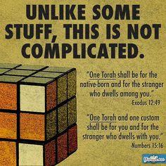 Torah for everyone