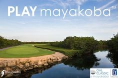 The OHL Classic has begun! It is time to #PLAYMayakoba!