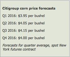 Mais: cosa ci attende nel 2016 - Materie Prime - Commoditiestrading