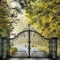 Automated security gates for driveway by Titan Doors and Gates http://www.TitanDoorsAndGates.com or call us at 817-984-5593.